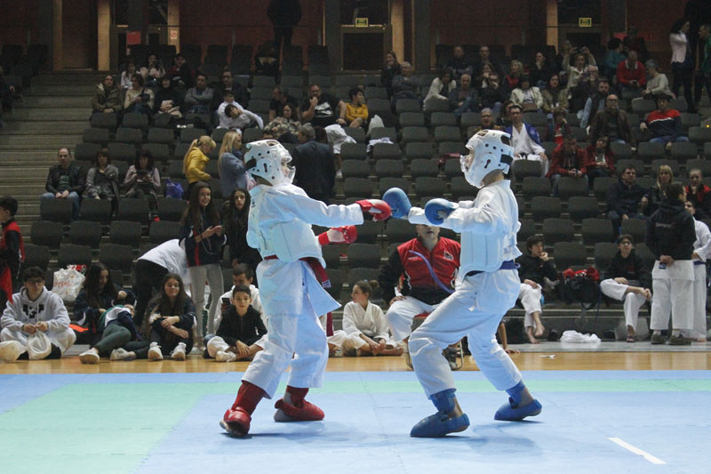 IV Campeonato Escolar 2018/2019 foto 134